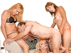 There's dicks everywhere! 3 shemales gang-bang 1 lucky lad
